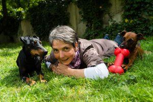 Dhana mit Hunden